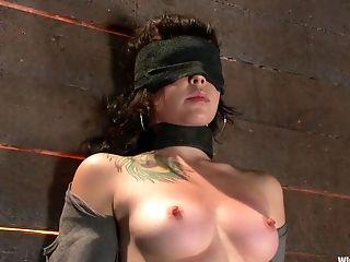 Fétiche , Star Du Porno, Princess Donna,