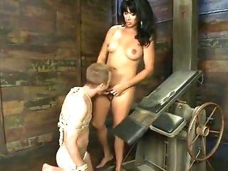 BDSM: 95 Videos