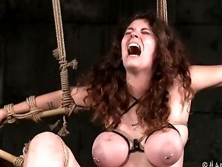 BDSM, Beauty, Big Tits, Black, Cute, European, Horny, Rough, Slut, Torture,